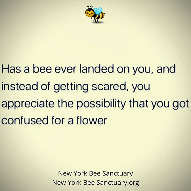 Protect the bees... ❤️