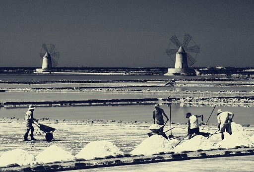 Harvesting Salt in the Trapani Sicily Salt pans (windmills are used to grind the salt)