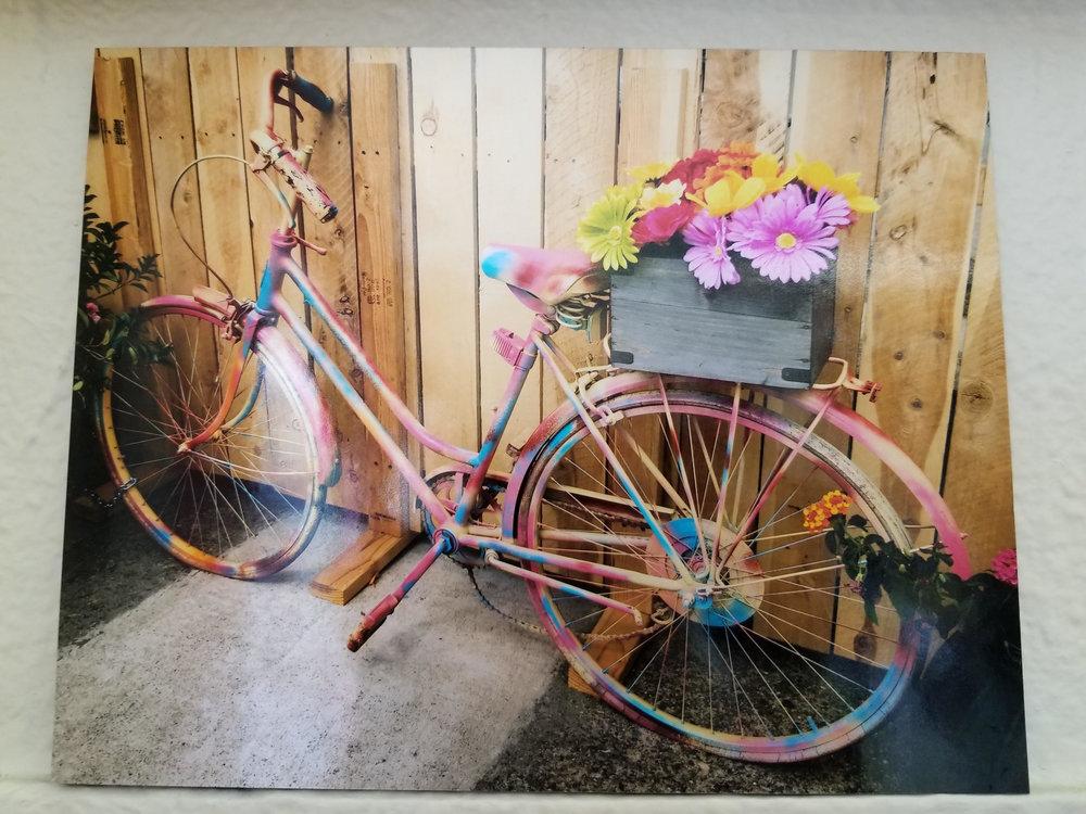Melange - 307 Riley St, Folsom, CARainbow Bike Photo