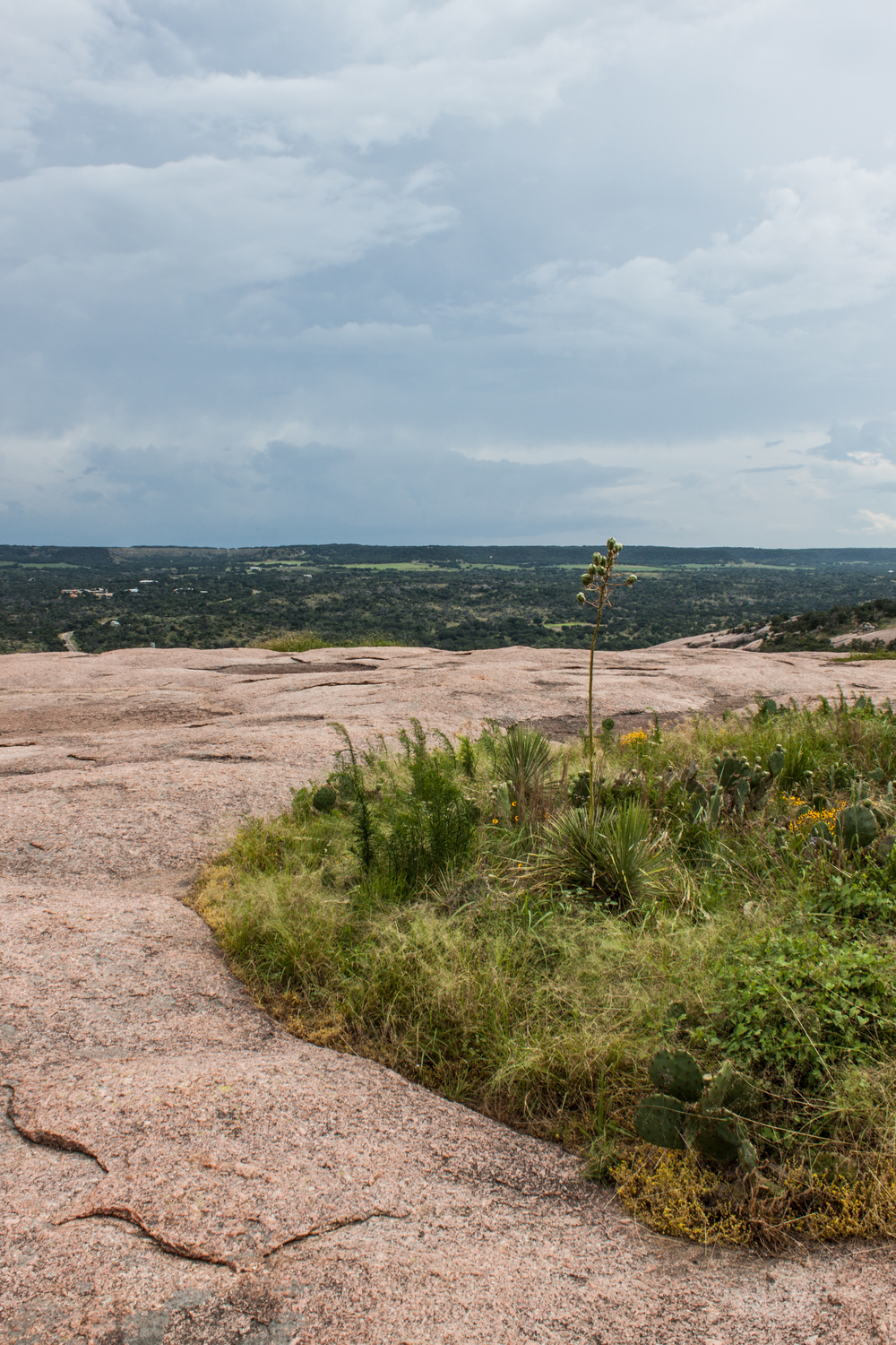 enchanted_rock-30.jpg