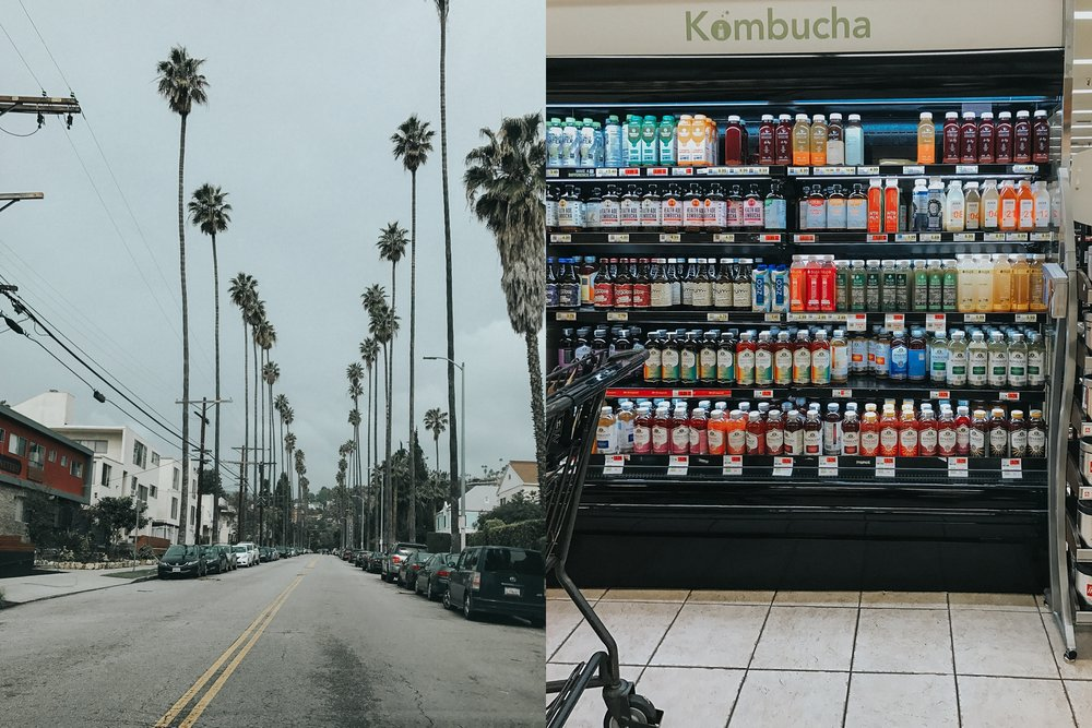 Hollywood - the land of palm trees and ALLLL the Kombucha one could want.