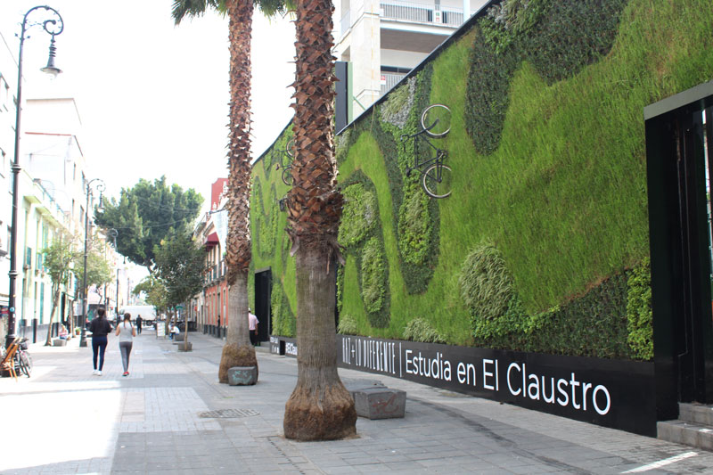 Above: When the appropriation is designed to serve long-term, or with a longer time line in mind, such as this vertical garden in Calle Regina that probably takes a lot of effort to maintain.