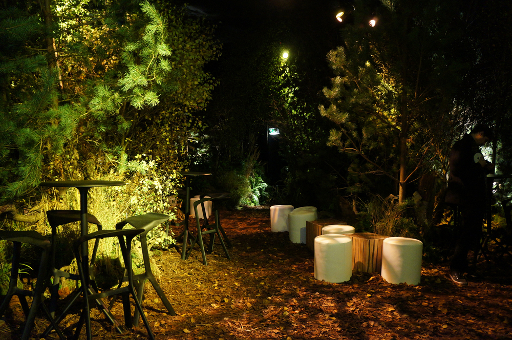 Rekorderlig Winter Forest Bar