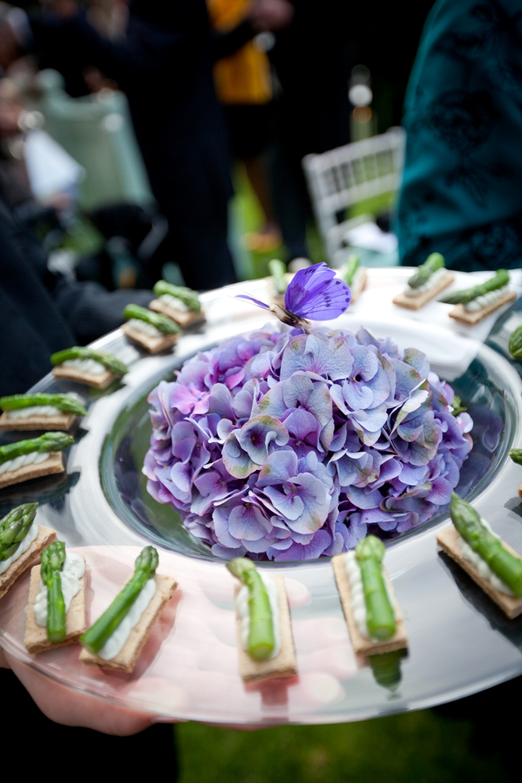Decorated Canape Trays