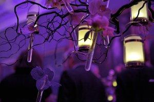 detail flowers purple orchids.jpg