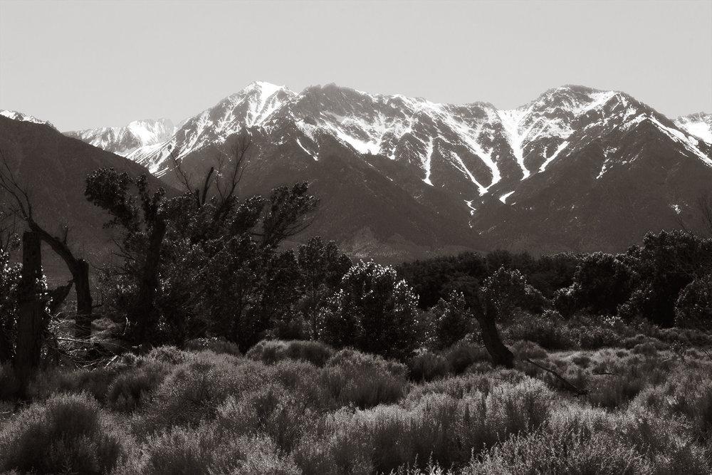 Manzanar-17 e, 2018