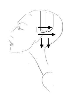 blow drying above shoulder reflections training academy Curl Set Diagram follow this section pattern through to the other size