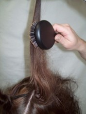 2.  Back brushing