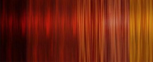 Hair Pigmentation 002.jpg