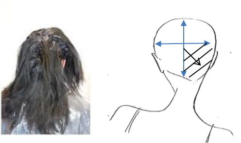 Follow the same process on the other side to complete the back section. Starting with one side of the head at a time, at the crown work in the same diagonal sections towards the hairline working away from the face.