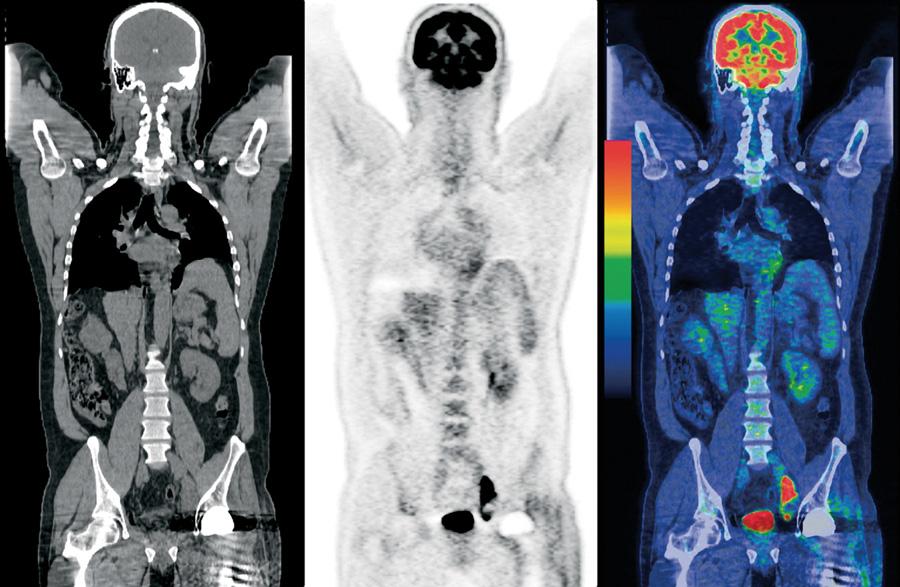 Pet Solano Diagnostics Imaging