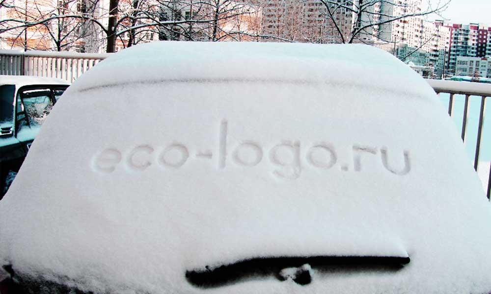 Ecologo-snow-03.jpg