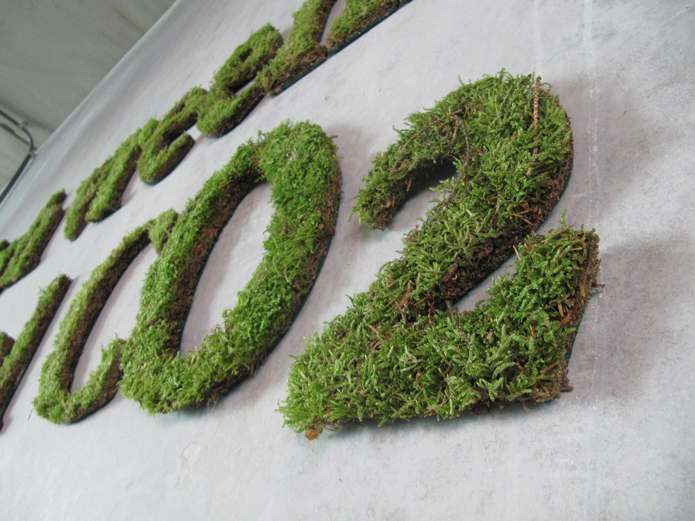 Plants - Plants can be arrange in patterns that our eyes recognise as letters and shapes making them perfectly suited for producing communication messages and signage.Living plants require maintenance. The moss pictured here will only last a few weeks. Perfect for events.Dry plants and mosses will last for years. Many have been treated with fire retardant materials. Duration: 1 week to several years