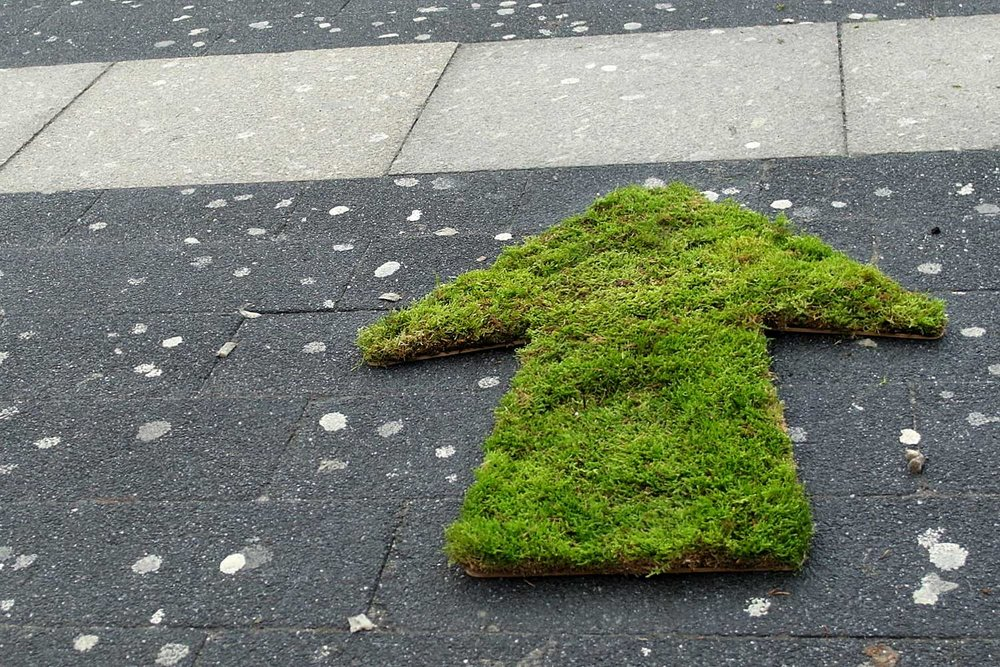 Way Finding - Get people from point A to point B using grass and moss signage.Duration: a few days if cared for properly.