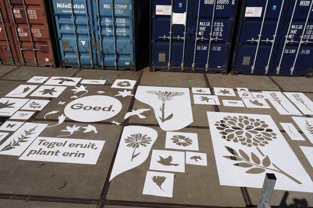 Leiden_flowers_website.jpg