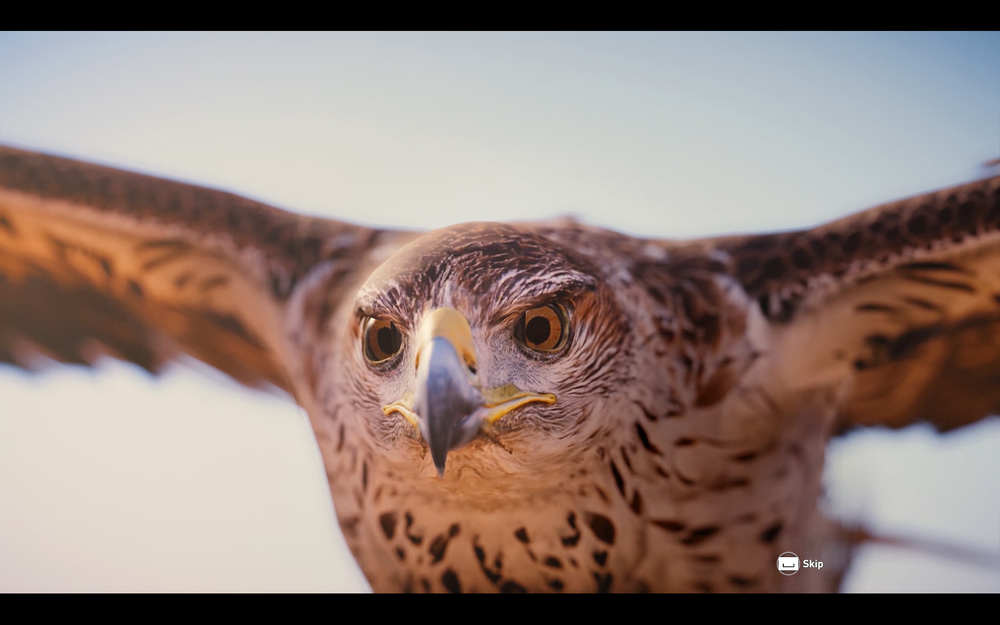 Assassin's Creed  Origins Screenshot 2017.11.08 - 19.56.12.83.png