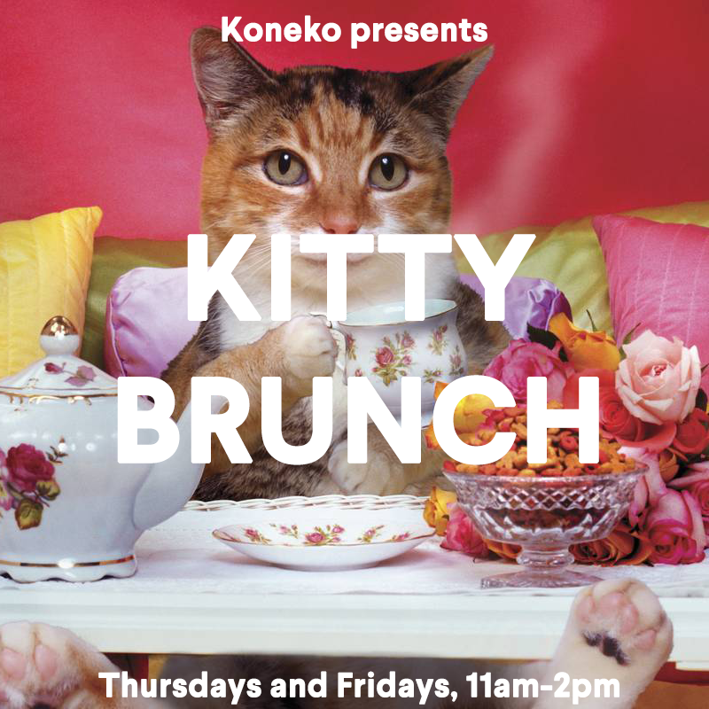 New Yorkers love brunch. We love to fight about who has the spiciest Bloody Mary. Whose omelets are to die for. Who has the longest wait time.     Let the brunch fight continue – but now there's a new cat in the ring. Scratch that…make it 20 cats.       Meet NYC's only Kitty Brunch, at Koneko. Stop in between 11 am and 1 pm Thursday and Friday. Tickets include an item from the breakfast menu, a beverage of your choice, and admission to the Cattery for only $25. Have an expertly prepared Cattuccino, a house made organic fruit juice, a mimosa, a piping hot waffle with Nutella – plus 20 furry friends.       Pro tip: Mornings in the Koneko Cattery are really special. Our kitties are all extra cute early in the day. They're fresh from a night of sleeping, they've had their breakfast, and they're eager to play with the first hoomin visitors.        Reserve your Kitty Brunch -– just $25! -- right MEOW.