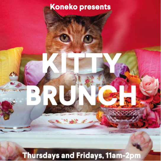 KittyBrunch.png