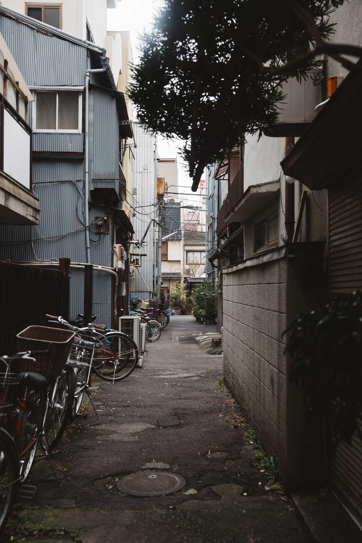 20160106_Tokyo_0553.jpg