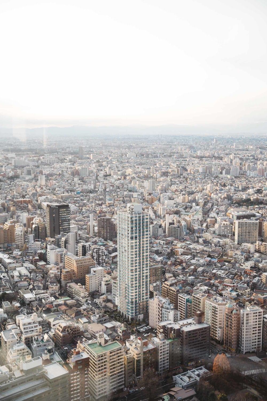 20160107_Tokyo_0577.jpg