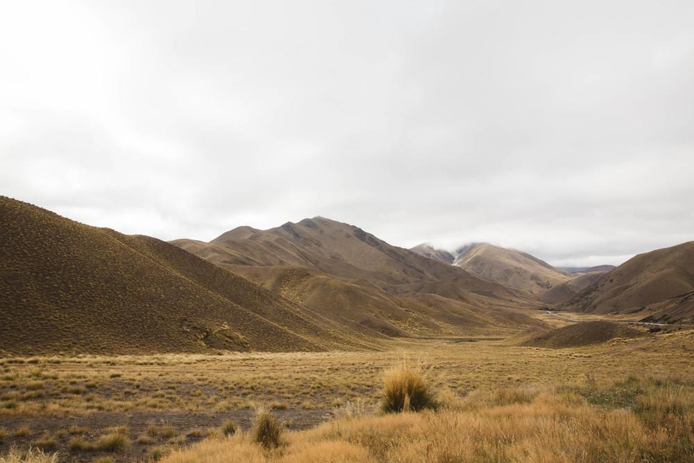 20160316_NZ_0119.jpg