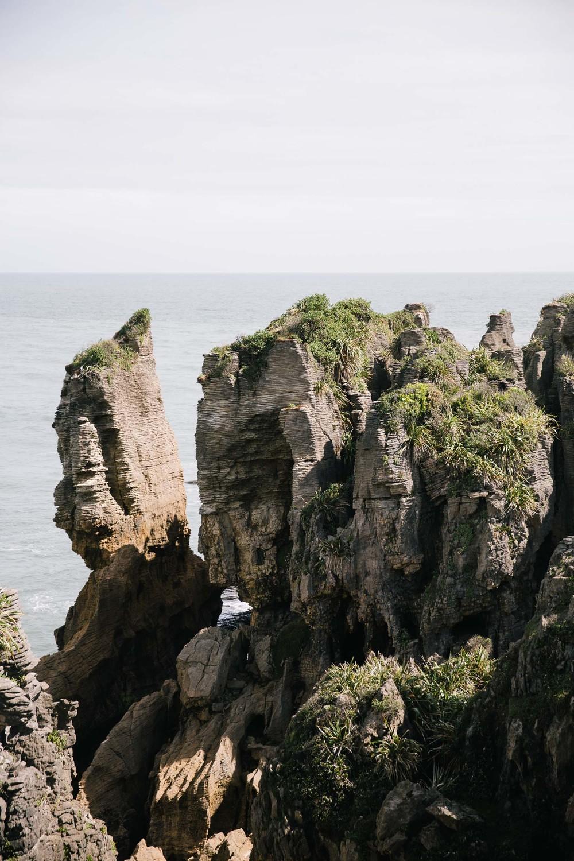20160320_NZ_0071.jpg