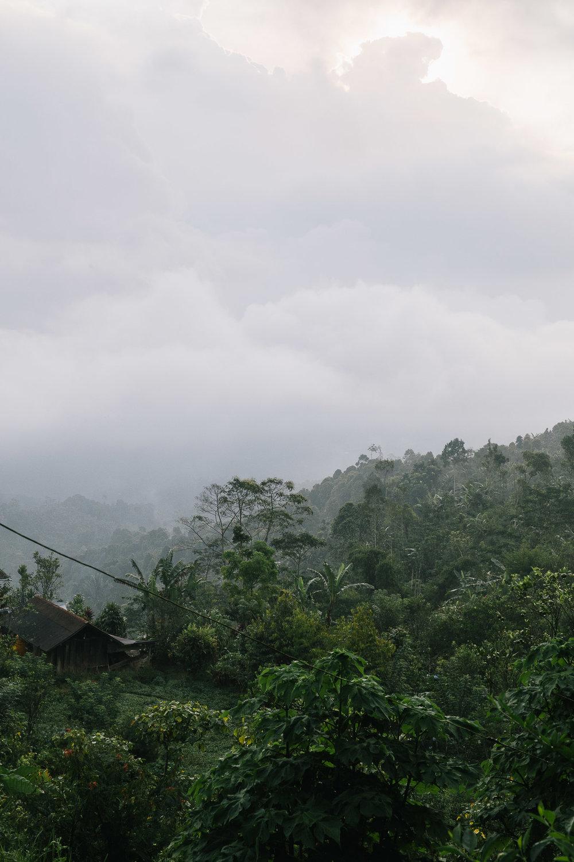 5 Best Bali Experiences
