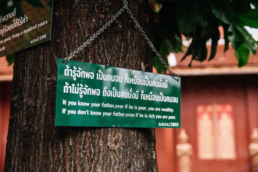 20180613_Chiang Mai_0099.jpg