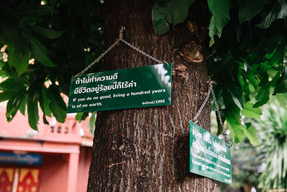 20180613_Chiang Mai_0098.jpg