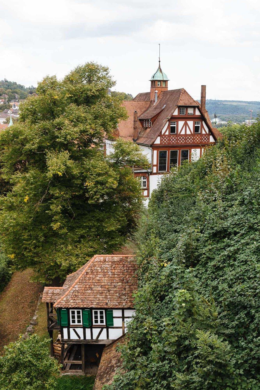 20180831_Tübingen_0113.jpg