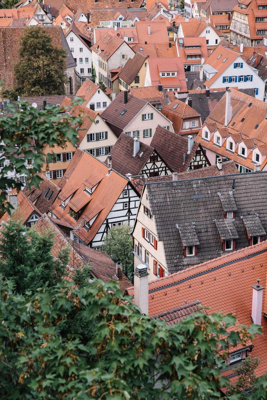 20180831_Tübingen_0117.jpg