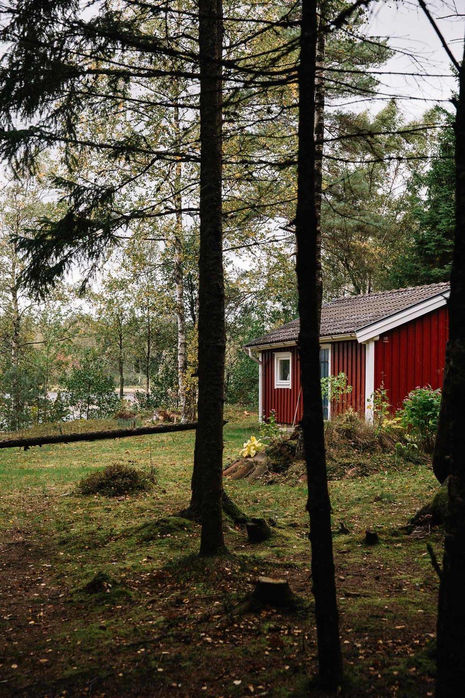 20180919_SwedenCountryside_0032.jpg