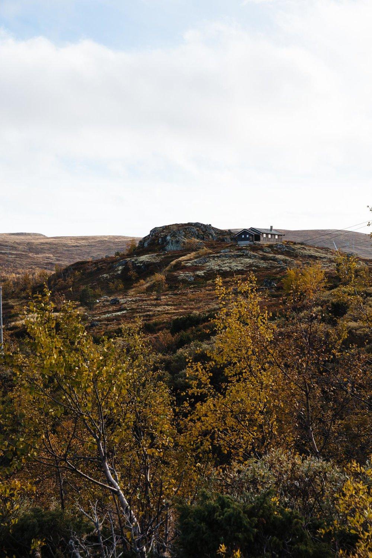 20180926_RorvikCamping to Eidfjord_0054.jpg