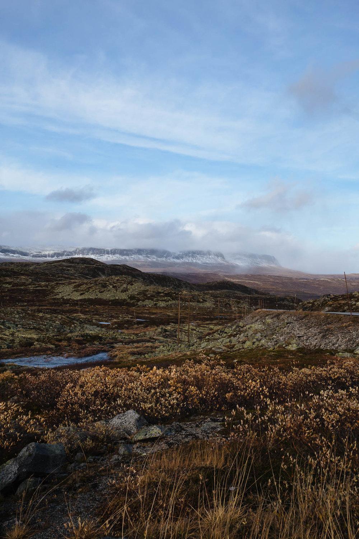 20180926_RorvikCamping to Eidfjord_0079.jpg