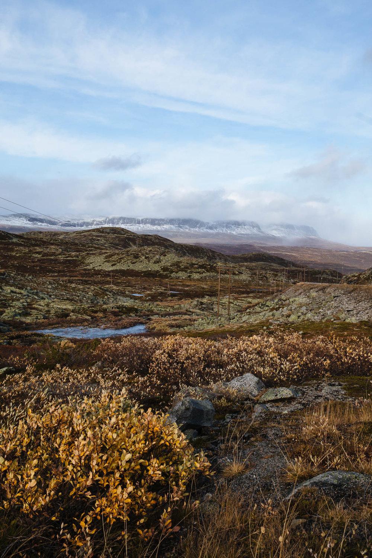 20180926_RorvikCamping to Eidfjord_0080.jpg