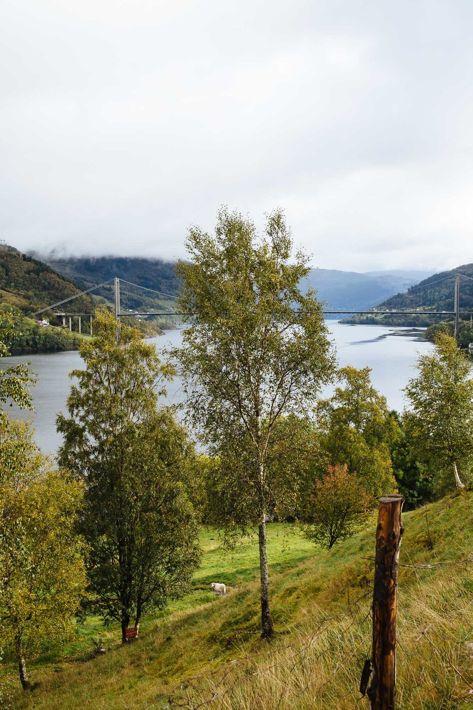 20180928_Bergen to Kvandall_0017.jpg