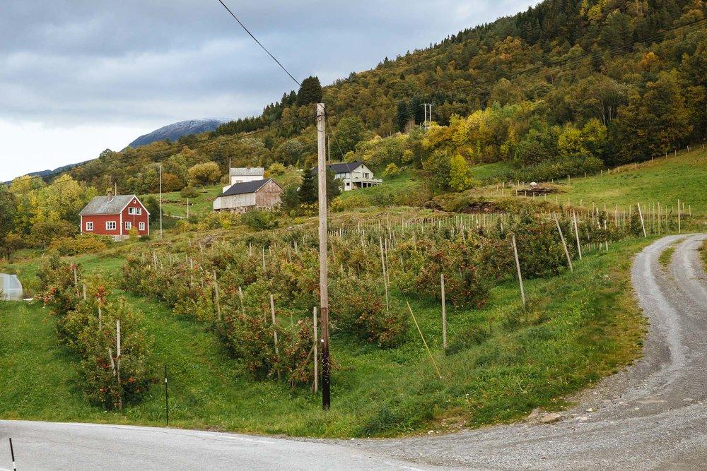 20180928_Bergen to Kvandall_0159.jpg