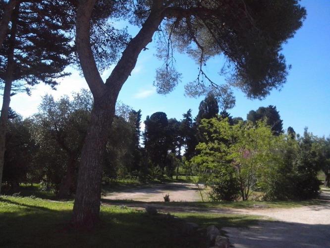 La-Casa-di-Ora-Fondazione-Le-Costantine-natura_foto_originali.jpg