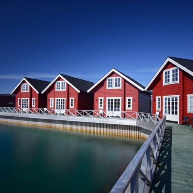 #lyngenhavfiske #lyngen #fishing #fishingtrip #opplevnorge #ilovenorway #bestofnorway