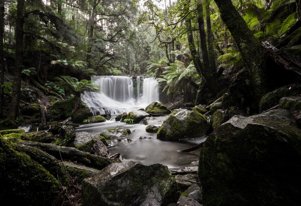 Tasmania - 06150 - Chris Goetchius 2017.jpg