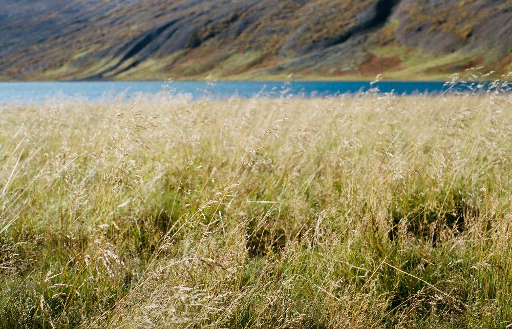 Iceland - 00173 - Chris Goetchius 2017.jpg