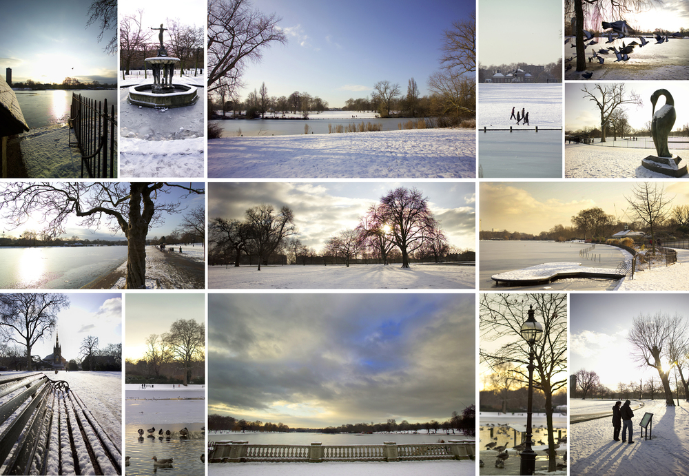 Hyde Park Winter.jpg