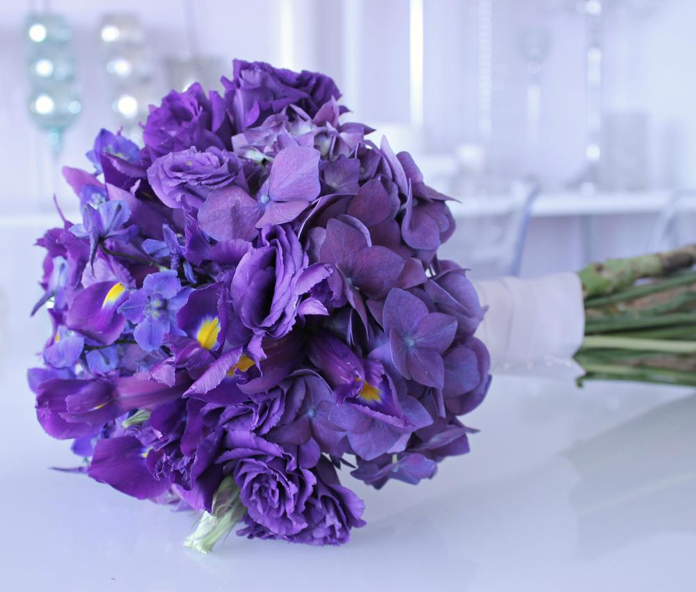 Purples (10).JPG