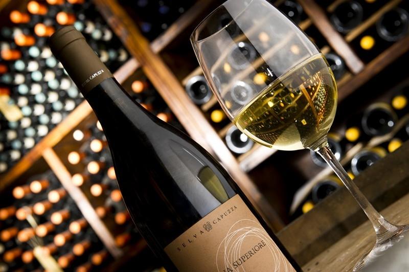 Degustazioni di vino in cantina
