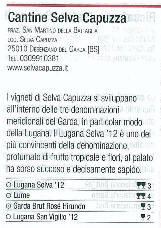 Gambero Rosso_Vini d'Italia_2014_pag_304_Selva Capuzza_2.jpg