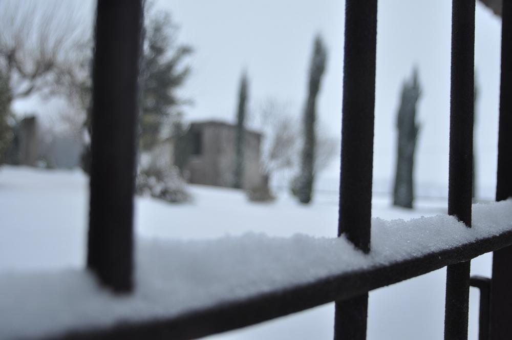 Emozionale_Ghiaccio e Neve (3).jpg