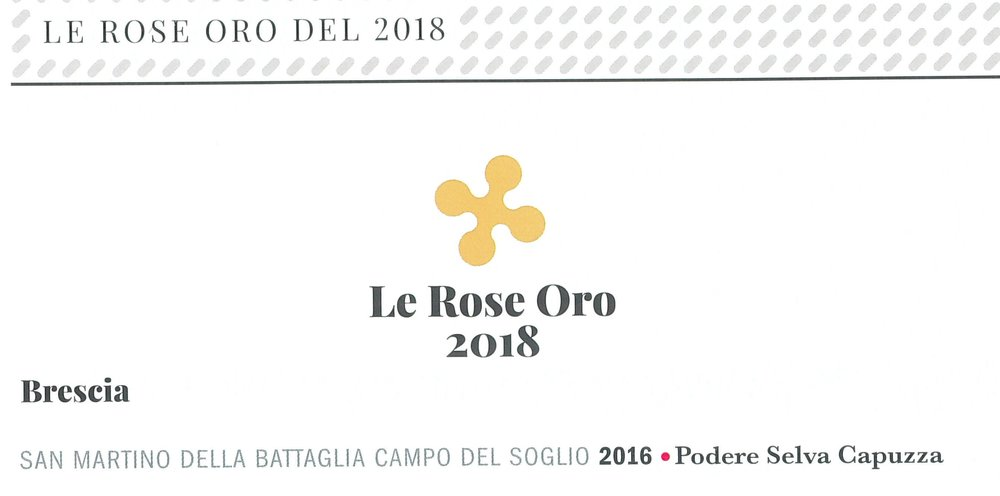 Viniplus Ais Lombardia_2018_Premio Rosa d'ORO_CDS.jpg