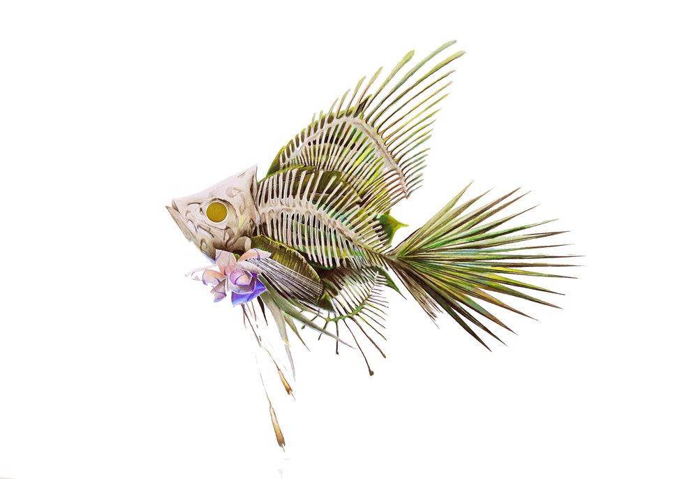 angelfish1.jpg