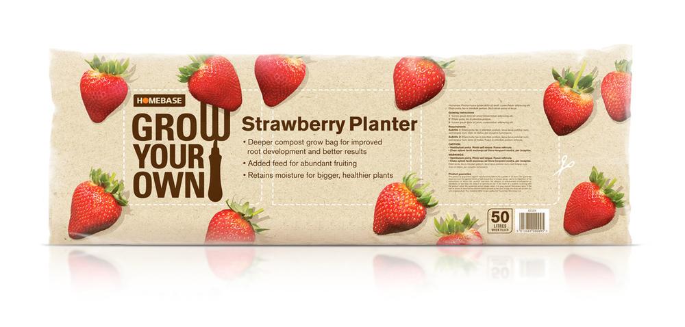 GrowYourOwn_Strawberries.jpg