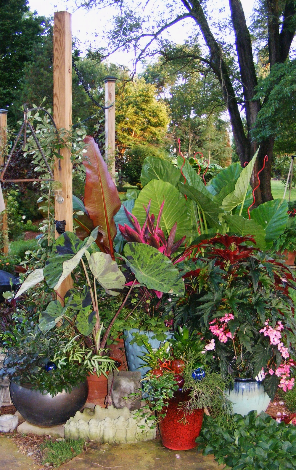 Mixed tropical grouping